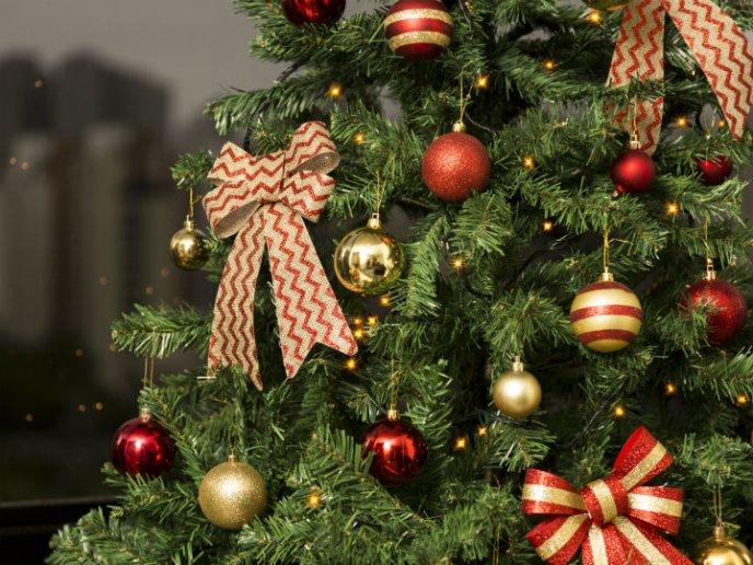 ¿Un Árbol de Navidad?