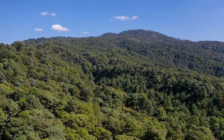 Michoacán y sus áreas naturales